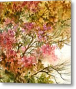 Autumn Colors And Twigs Metal Print