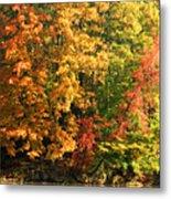 Autumn Colors II Metal Print