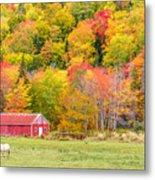 Autumn Colors Near Lake Ainslie  Metal Print