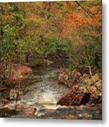 Autumn Colors On Pickle Creek 1 Metal Print