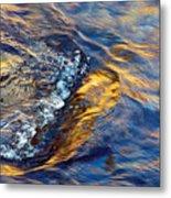 Autumn Colors River Rapids Metal Print
