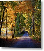 Autumn Country Lane Metal Print