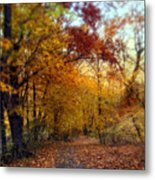 Autumn Crescendo Metal Print