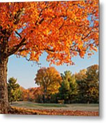 Autumn Dawn Metal Print