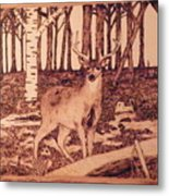 Autumn Deer Metal Print by Andrew Siecienski