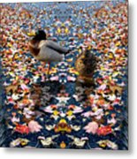 Autumn Ducks Metal Print