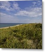 Autumn Dune View Metal Print