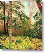 Autumn Fall Colors - Brilliant Ferns In The Blue Ridge Ap Metal Print