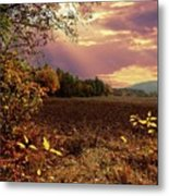 Autumn Fields Metal Print