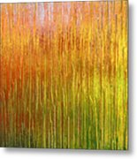 Autumn Fire Abstract Metal Print