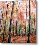 Autumn Forrest Metal Print
