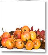 Autumn Friuts And Leaves Metal Print