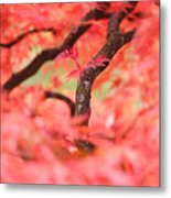 Autumn From Within Metal Print