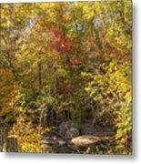 Autumn Glory - Unami Creek Sumneytown Pennsylvania Usa Metal Print