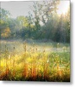 Autumn Glow Metal Print