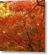 Autumn Gold Poster Metal Print