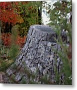 Autumn Gone-by Metal Print