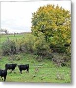 Autumn Herd Metal Print