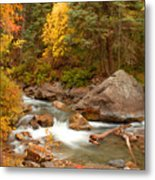 Autumn In Alpine Loop Metal Print