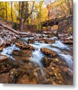 Autumn In American Fork Canyon Metal Print
