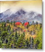 Autumn In Baxter State Park Maine Metal Print