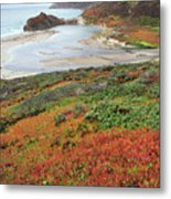 Autumn In Big Sur California Metal Print by Pierre Leclerc Photography