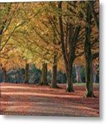 Autumn In Clifton, Bristol Metal Print