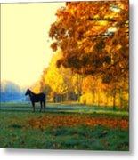 Autumn In Kathrines Way Metal Print