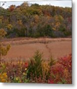 Autumn In Missouri Metal Print