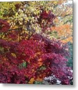 Autumn In October Metal Print