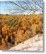 Autumn In Riding Mtn National Park Metal Print