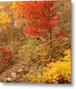 Autumn In Shenandoah Metal Print