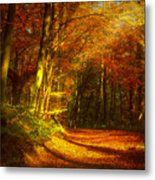 Autumn In Siebengebirge Metal Print