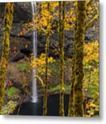 Autumn In Silver Falls Metal Print