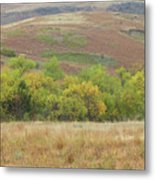 Autumn In Slope County Metal Print