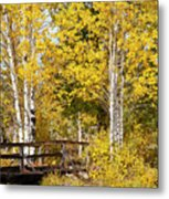 Autumn In Teton National Park Metal Print