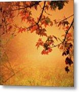 Autumn In The Fog. Metal Print