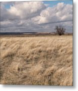 Autumn In The Steppes Metal Print