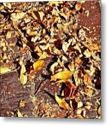 Autumn Is On The Way Metal Print