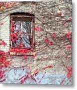 Autumn Ivy Metal Print