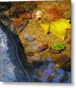 Autumn Jewels Metal Print