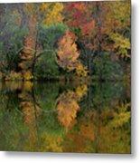 Autumn Lagoon Reflection  Metal Print
