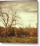Autumn Landscape In Late November Metal Print by Sandra Cunningham