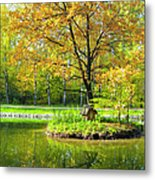 Autumn Landscape With Red Tree Metal Print