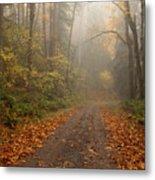 Autumn Lane Metal Print by Mike  Dawson