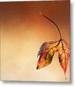 Autumn Leaf Fallen Metal Print