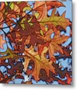 Autumn Leaves 17 - Variation  2 Metal Print