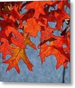 Autumn Leaves 19 Metal Print