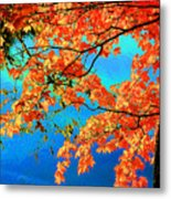 Autumn Leaves 8 Metal Print