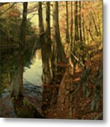 Autumn Leaves And Cypresses Metal Print